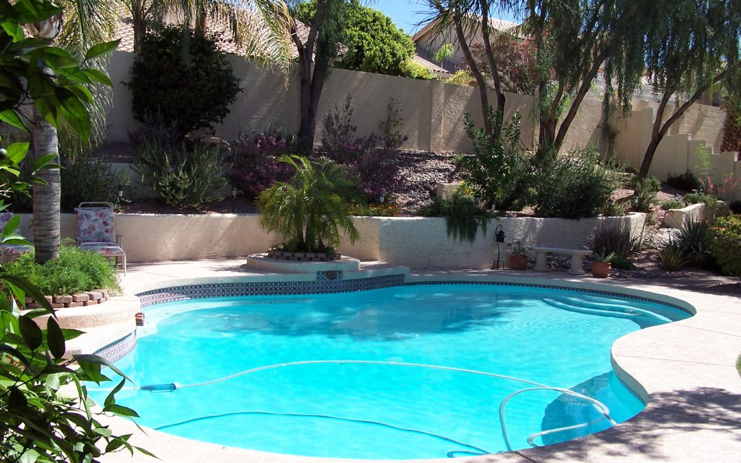 How to keep your swimming pool water clean
